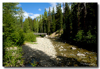 Canyon trail, Manning Park 1