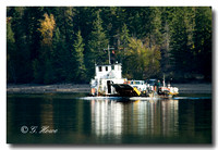 Shuswap lake cable ferry